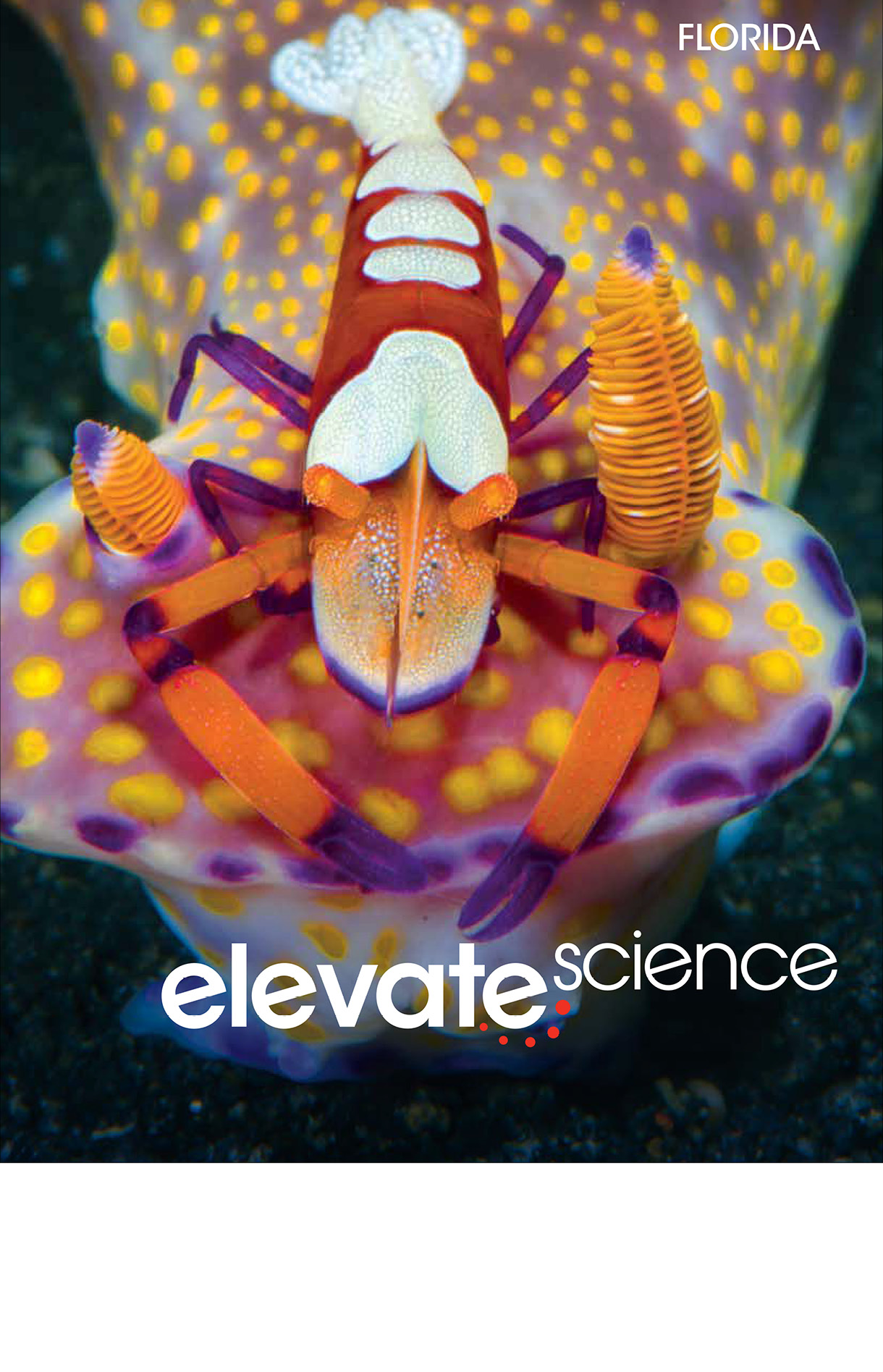 Book cover Elevate Science book. It has an emperor shrimp sitting atop a ceratosoma nudibranch.